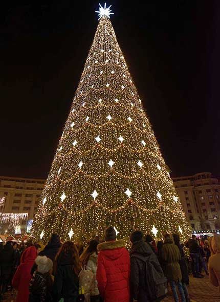 A big crowd gathering around a massive Christmas tree.